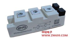 开关特性和高短路能力IGBT--BG100B12UX3-I